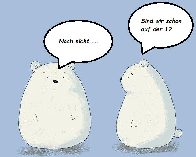 Contentbär-Contest: 2 Bären in das Ranking