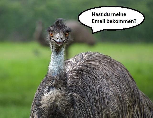 Der EMMu ist im E-Mail-Marketing zuhause.