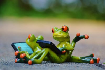Zwei Frösche am Computer stehen sinnbildlich für das SEO-Tool Screaming Frog