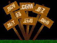 Es gibt zahlreiche Top-Level-Domains. Welche eine URL SEO-freundlich gestaltet, erfahren Sie bei marmato.