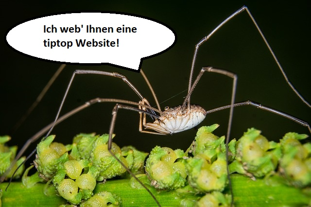 Der WebDevKnecht ist im WebDev zu Hause.