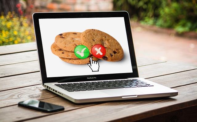 Cookie-Einstellungen für die Website.