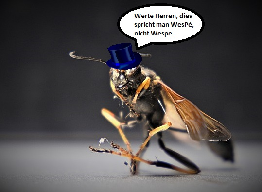 Die WesPe kümmert sich um die WebP-Optimierung.