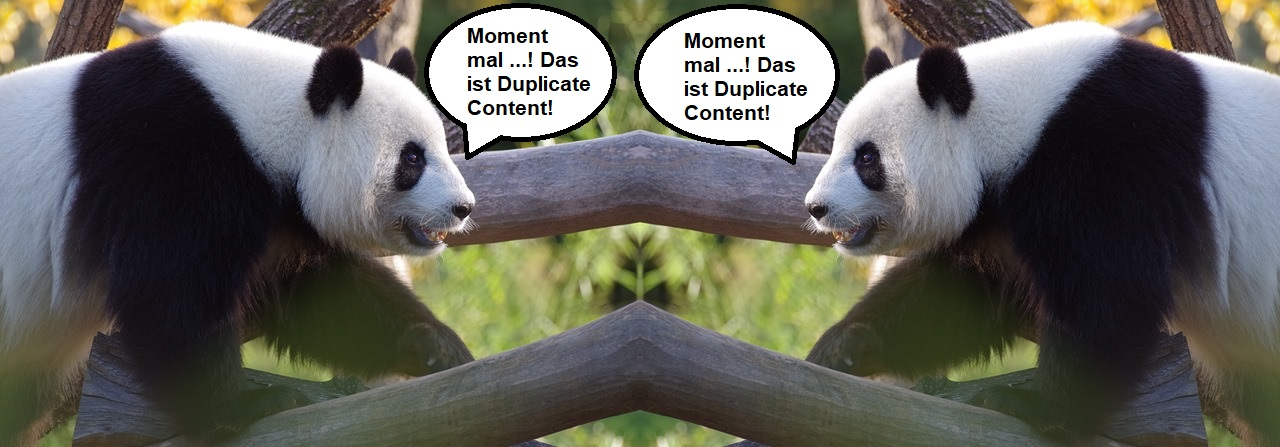 Wildsauseo hat seit dem Panda Update keine Chance mehr!