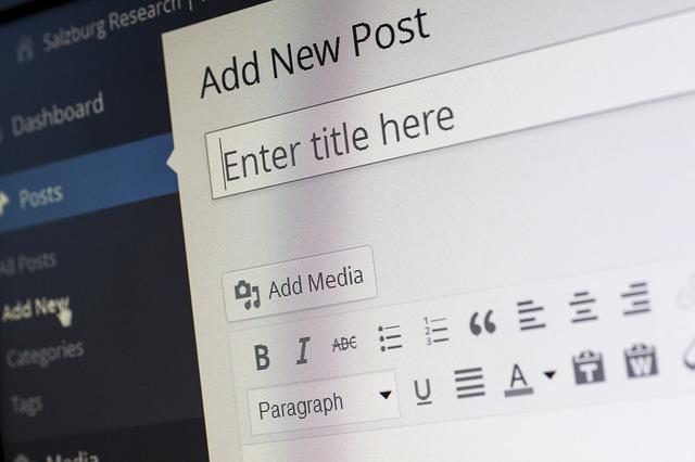 Wordpress ist ein beliebtes CMS, auch bei SEOs